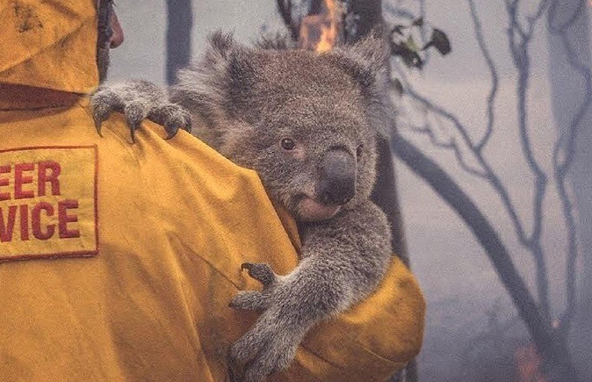 Pożary w Australii a globalne OCIEPLENIE