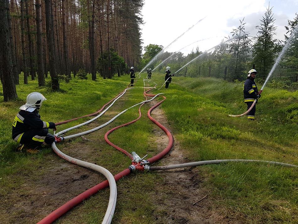 Odbyły się ćwiczenia wojewódzkie straży pożarnej w rudzkich lasach