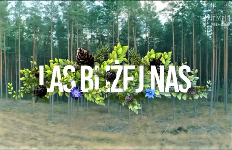 Las bliżej nas. TVP 1 Las bliżej nas - Odnawianie rudzkiego lasu po klęskach