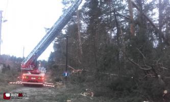Zerwane dachy, powalone drzewa - bilans skutków wichury