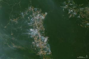 Jak to jest z tą Amazonią?  Analiza sytuacji