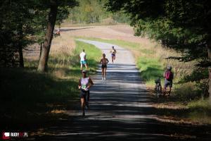 VI Kuźniański Półmaraton Leśny RAFAMET [ZDJĘCIA]